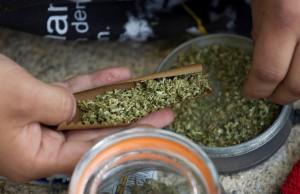 Una-persona-se-lia-un-cigarrillo-de-marihuana-d