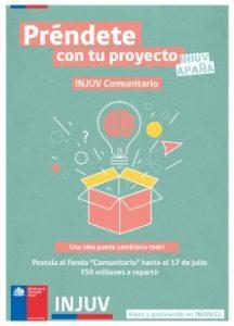 FONDO-COMUNITARIO-011-239x332