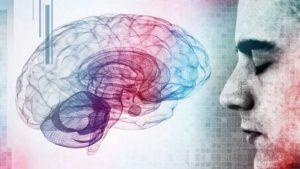 1476745827-cerebro