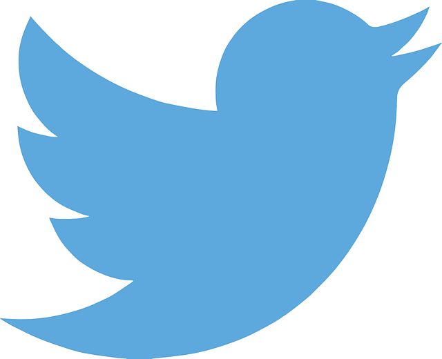 twitter-es-la-red-social-mas-eficaz-para-una-estrategia-de-marketing